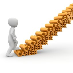career coach decisions education choice